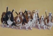 'The Bugler pack'