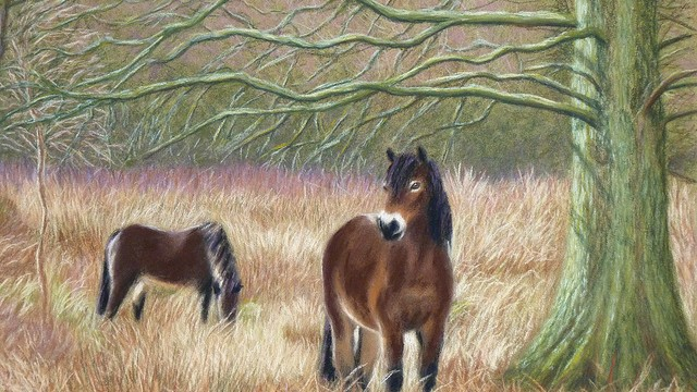 'Grazing ponies on Skipwith Common'